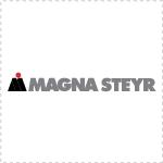 MotorBusiness | Illegale Preisabsprachen? Razzia bei Magna, IAC, Borgers und Faurecia